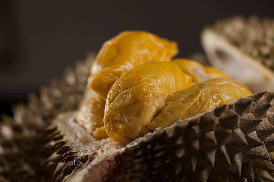 singapore durian delivery